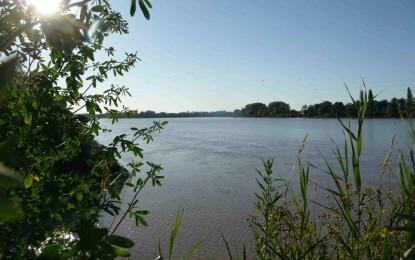 Une femme jetée dans la Garonne pour une cigarette refusée
