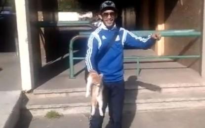 Oscar, chat torturé : quand les réseaux sociaux orientent la justice